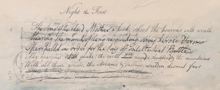 Screenshot of manuscript page from William Blake's Vala, the Four Zoas.